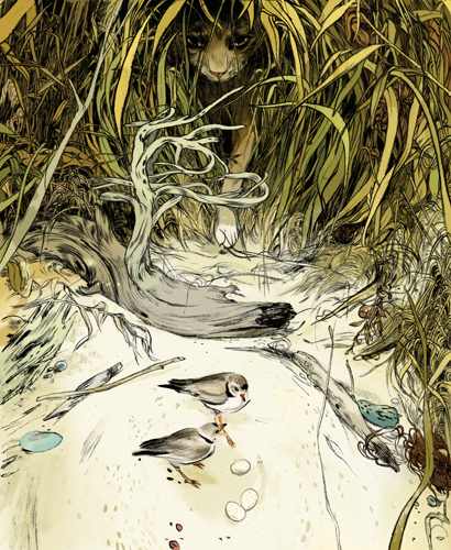 art blog - Jillian Tamaki - empty kingdom