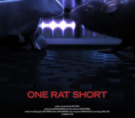 one rt short
