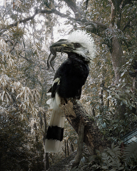 art blog - Simen Johan - empty kingdom