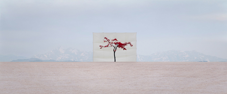 art blog - Myoung Ho Lee - empty kingdom
