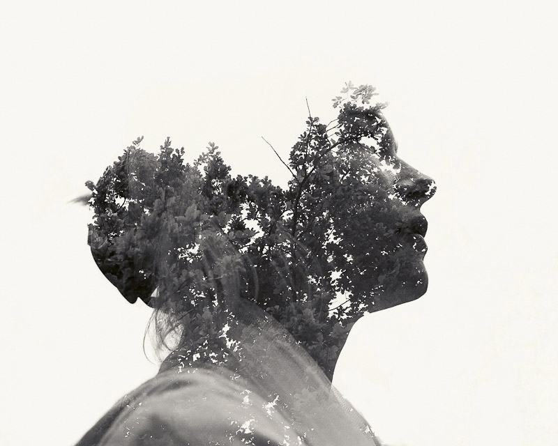 Art Blog - Christoffer Relander - Empty Kingdom