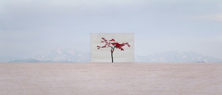 Myoung Ho Lee_Web1