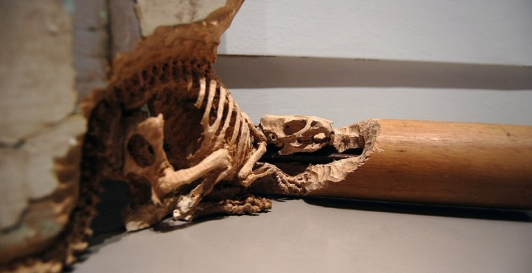 Maskull Lasserre - Empty Kingdom - Art Blog