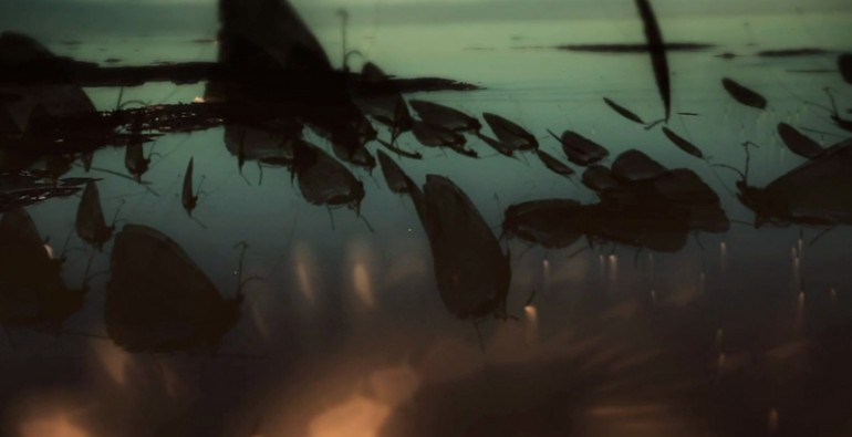 Art Blog - Hannes Vartiainen, Pekka Veikkolainen - Empty Kingdom